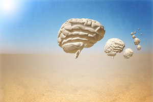 Caravan of brains in the desert